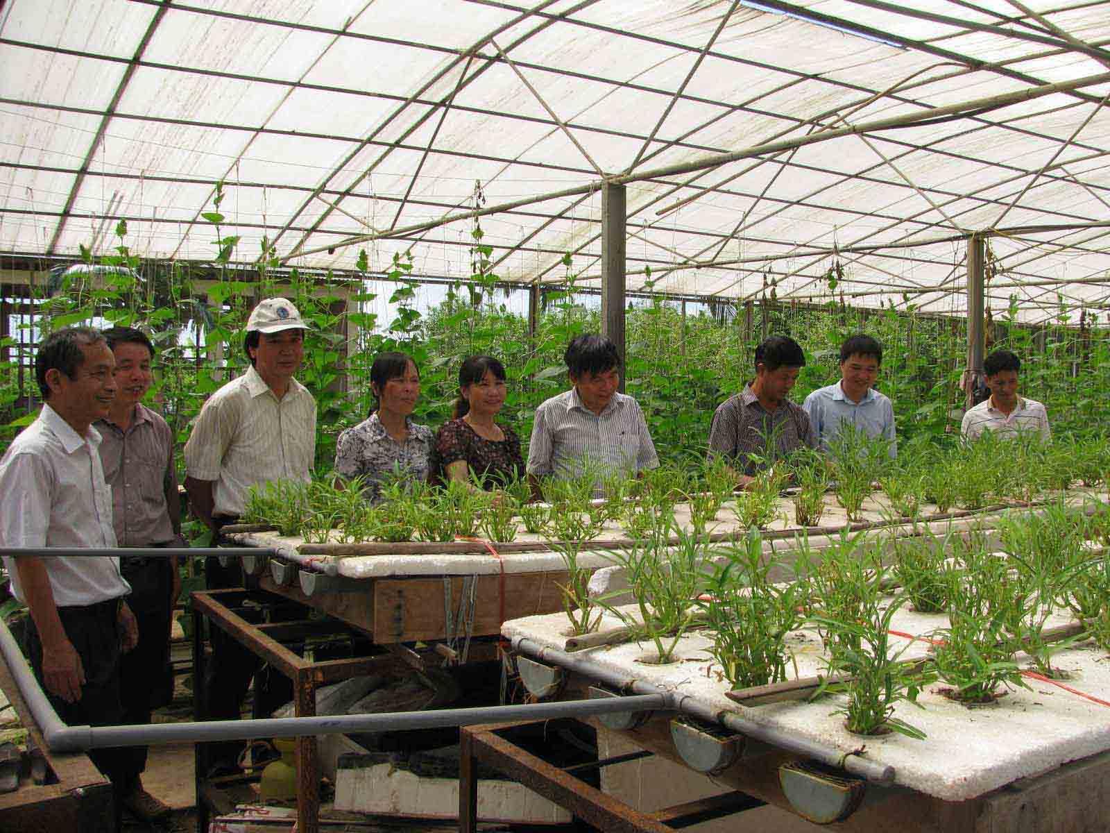 ứng dụng nông nghiệp công nghệ cao