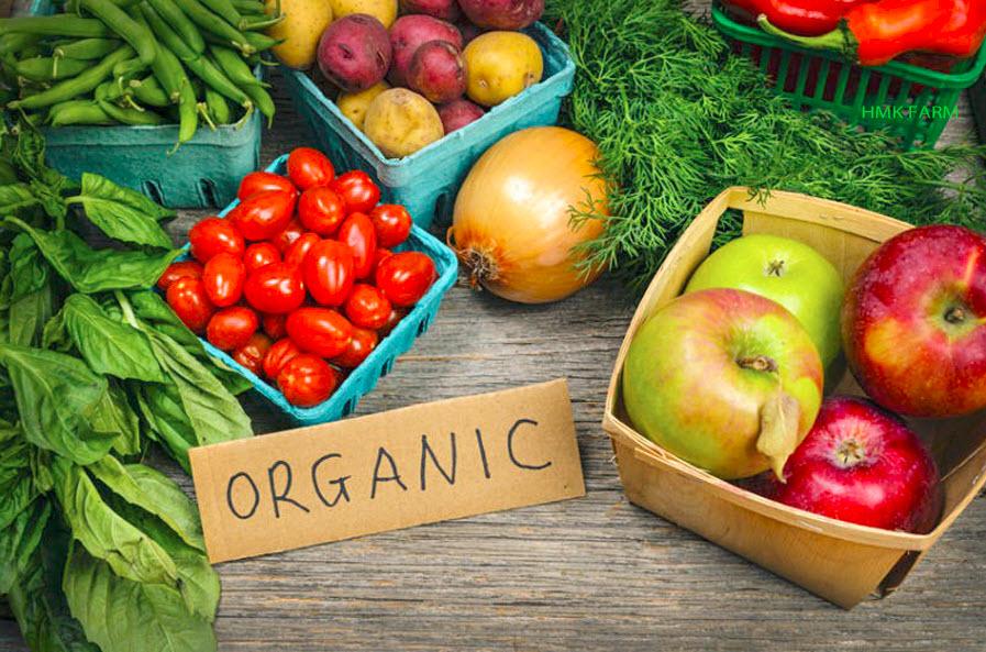 Đầu tư cho nông nghiệp hữu cơ đang trở thành xu thế chung