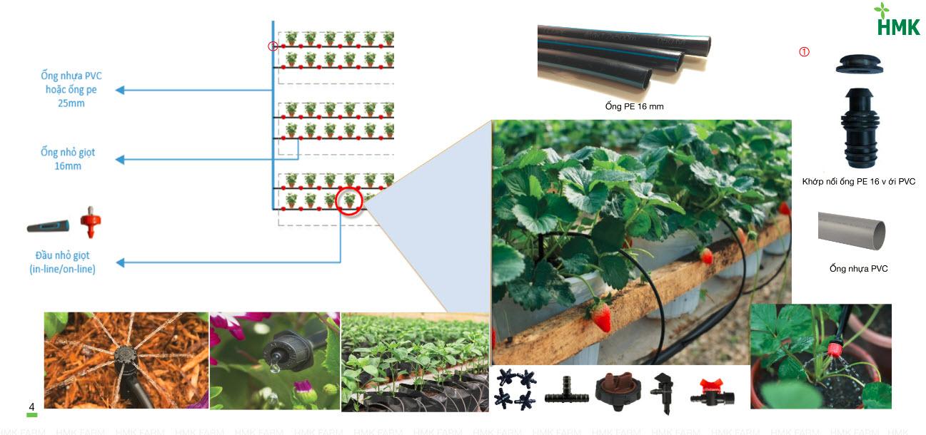 HKM FARM Nông nghiệp công nghệ cao