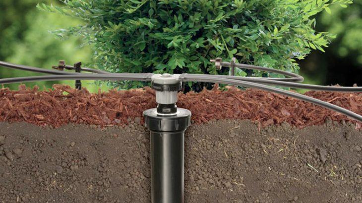 Ứng dụng công nghệ trong tưới sân vườn giảm thiểu công sức lao động