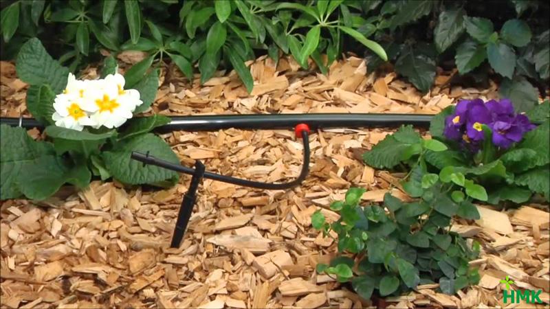 Tưới nhỏ giọt vườn hoa