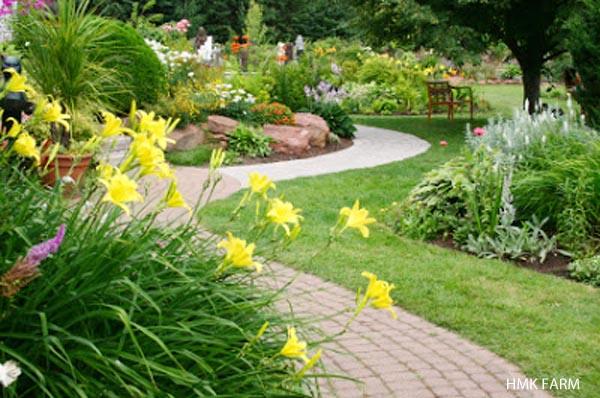 Tưới sân vườn