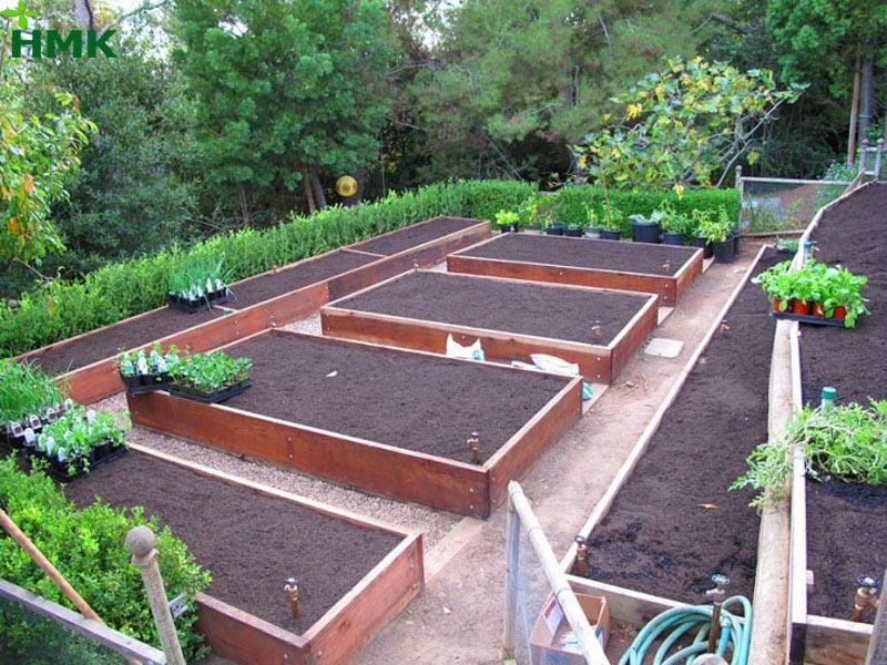 Tưới nhỏ giọt sân vườn giúp tiết kiệm nước và công sức