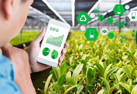 IoT nông nghiệp